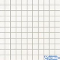 COLOUR WHITE MOZAIKA KWADRATOWA ŚCIENNA 30X30 GAT.1