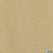 ARKESIA BROWN GRES REKT. SATYNA 59.8X59.8 G1