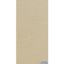 ARKESIA BEIGE GRES STRUKTURA REKT. MAT. 29.8X59.8 G1