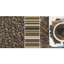 VIVIDA BIANCO INSERTO CAFE B 30X60 G1