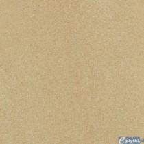 ARKESIA BROWN GRES STRUKTURA REKT. MAT. 44.8X44.8 G1