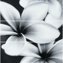 PRET A PORTER FLOWER COMPOSITION KPL=3 SZT DEKOR 75X75 G1