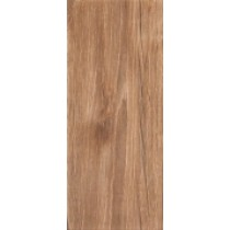 BOARD BROWN ŚCIENNA 25X60 G1