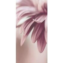 Sorenta Inserto Kwiaty A dekor 30x60 Gat 1