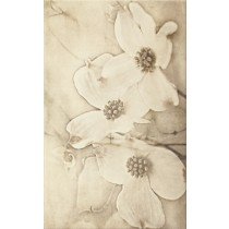 Tuti Beige Inserto Flower dekor 25x40 gat 1