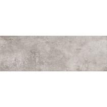Concrete Style Grey płytka ścienna 20x60 Gat 1