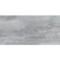 FLOORWOOD GREY LAPPATO 29X59,3 GAT.1