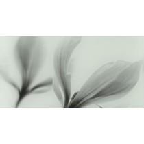 JOY FLOWER DEKOR 22,3X44,8 GAT.1
