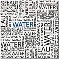 Montana Water Centro dekor 10x10 Gat 1