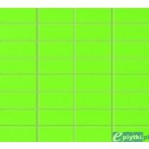 COLOUR GREEN MOZAIKA PROSTOKĄTNA ŚCIENNA 32.7X29.5 GAT.1