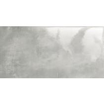 EPOXY GRAPHITE 1 44.8X89.8 GRES POŁYSK Gat 1