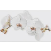 Marisol White Inserto Flower dekor 25x40 gat 1