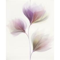 LORIS WHITE INSERTO FLOWER 40X50 (KOMPLET) gat 1