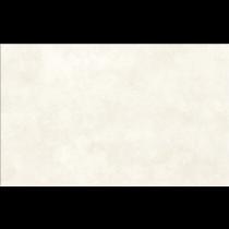 REGNA WHITE  ŚCIENNA MAT 25X40 G1